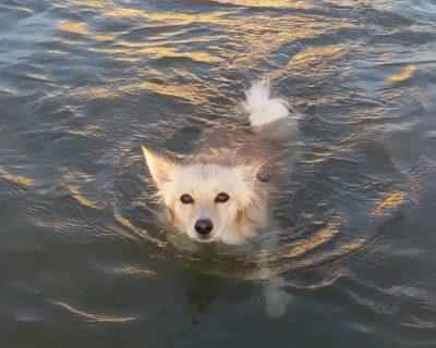 Heidi al mare