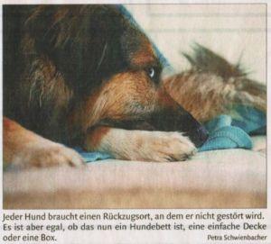 Jeder Hund braucht einen Rückzugsort