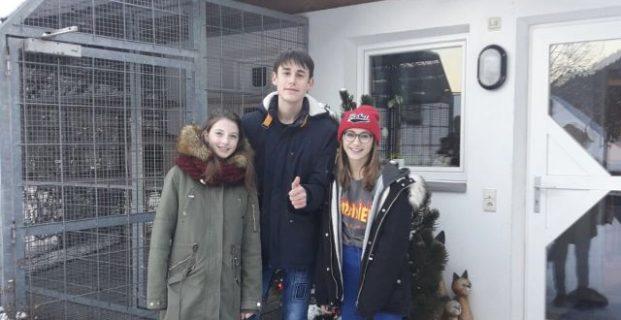 Jugend engagiert sich im Tierschutz