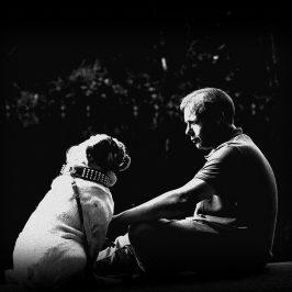 Unsere Bindung zum Hund