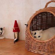 Wilma & Betty